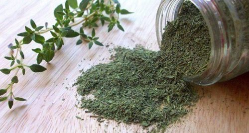 Finally – a Herb that Destroys Herpes, Candida, Strep and Flu Virus