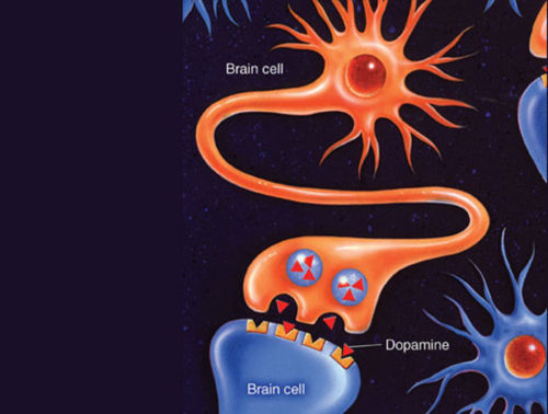 How to Charge your Dopamine Level