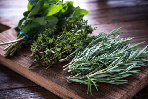 The Best Herbs With Secret Benefits For Your Brain