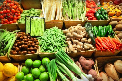 Effectively Transition Into a Plant Based Diet