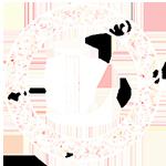 The Library Studio Logo