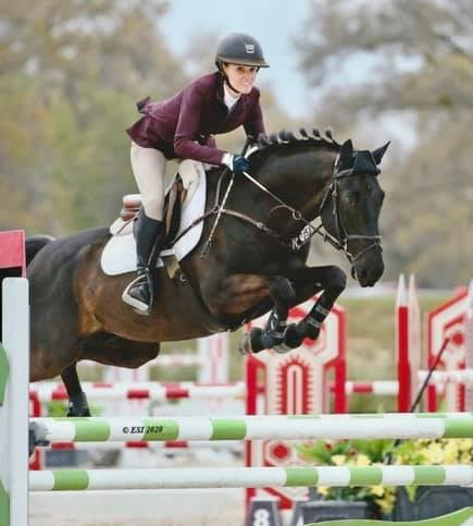 Equestrianism - Show jumping