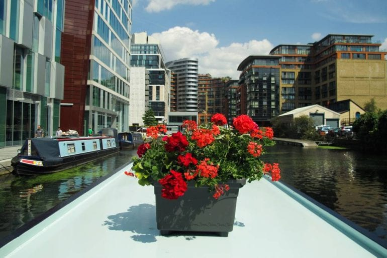 flowers on the kid friendly london Airbnb narrowboat