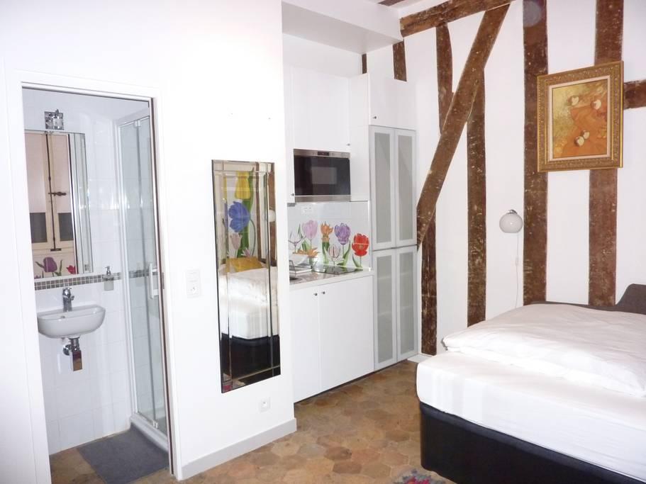 upscale paris airbnb in place de victoires
