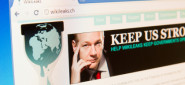 [Article] WikiLeaks Takes Center Stage; Government Reactions Intensify