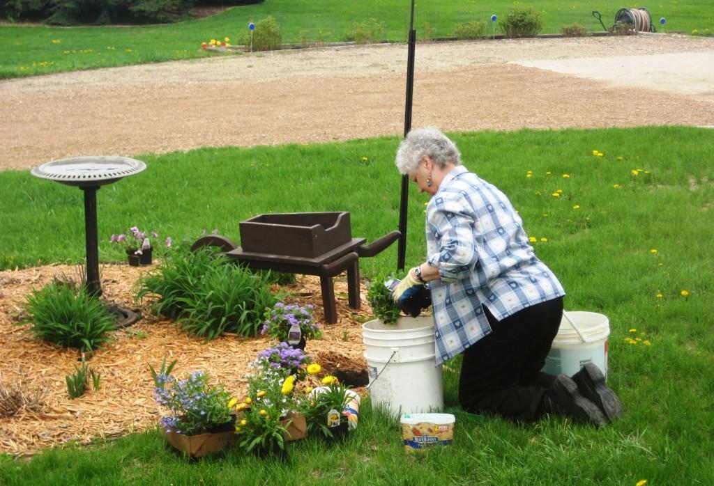 Mom planting hope.