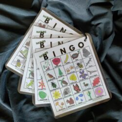 Picture of 4 Bingo Cards