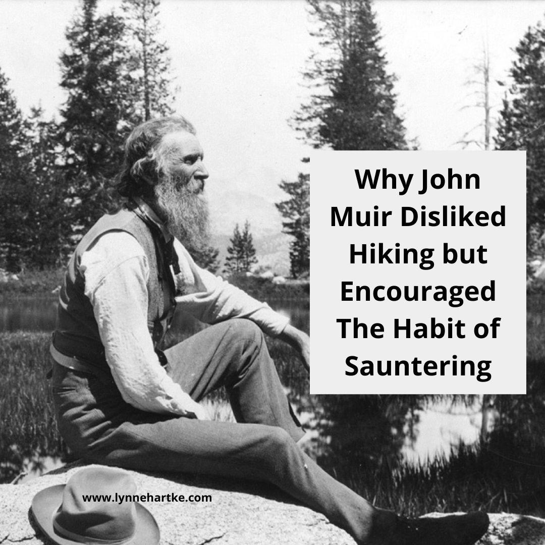 John Muir Sauntering