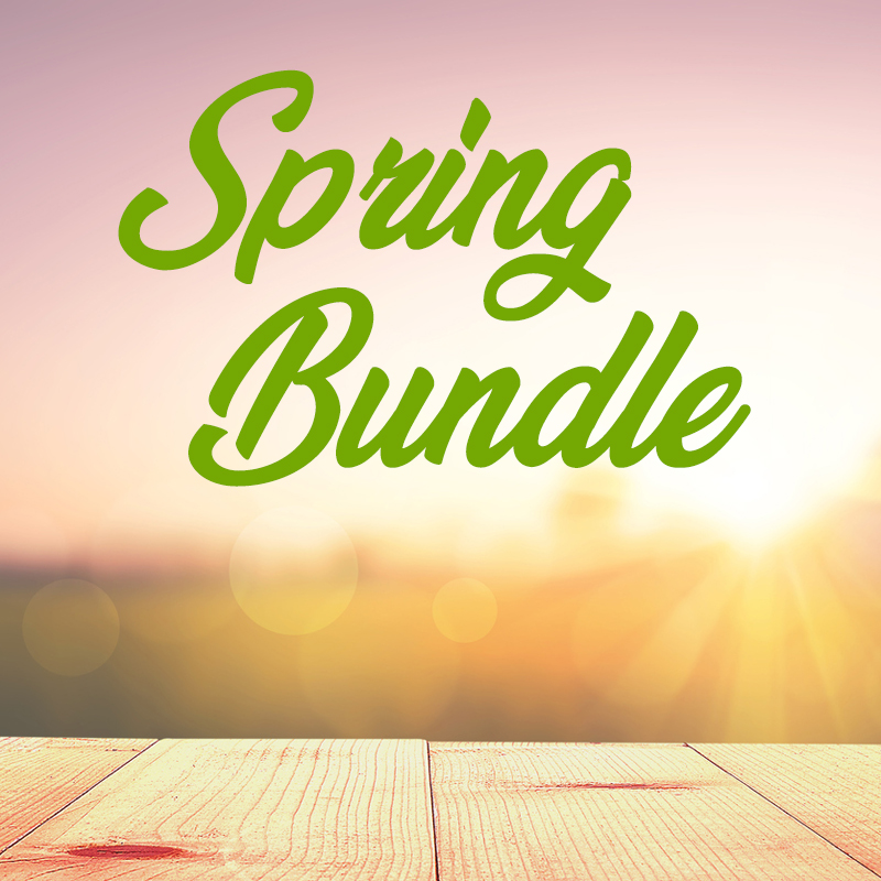 Save 80% on $494 worth of youth ministry lessons and games for spring, summer and beyond.