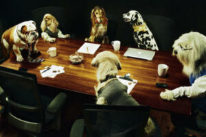dogs in a boardroom