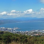 Wellington city and harbour from up on the hill