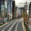 Tree Lined Empty Street, Tokyo