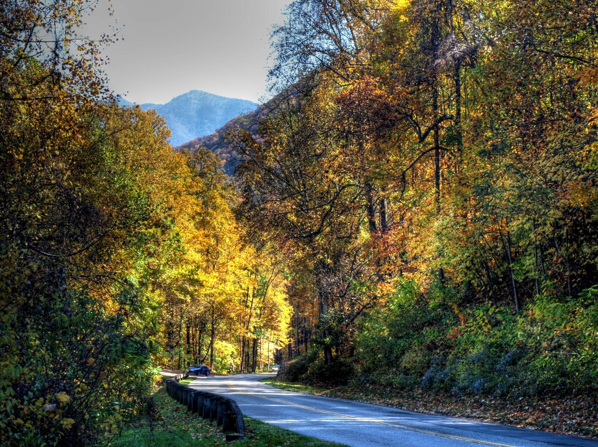 River Road Colors