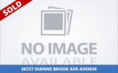 Sold: 36727 Dianne Brook Ave Avenue