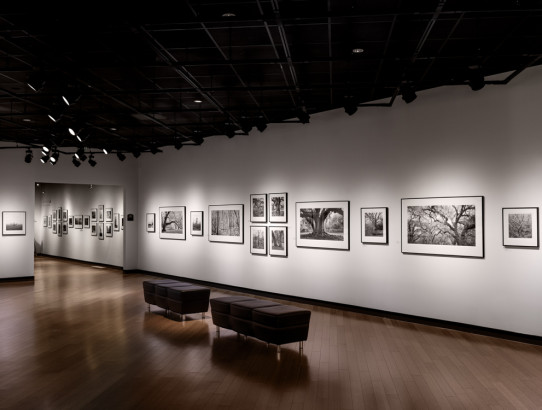 Terra Incognita at Southeast Museum of Photography Jan. 22 to Apr. 17, 2016