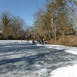 Jan 2013 Ice Skating Fun 2