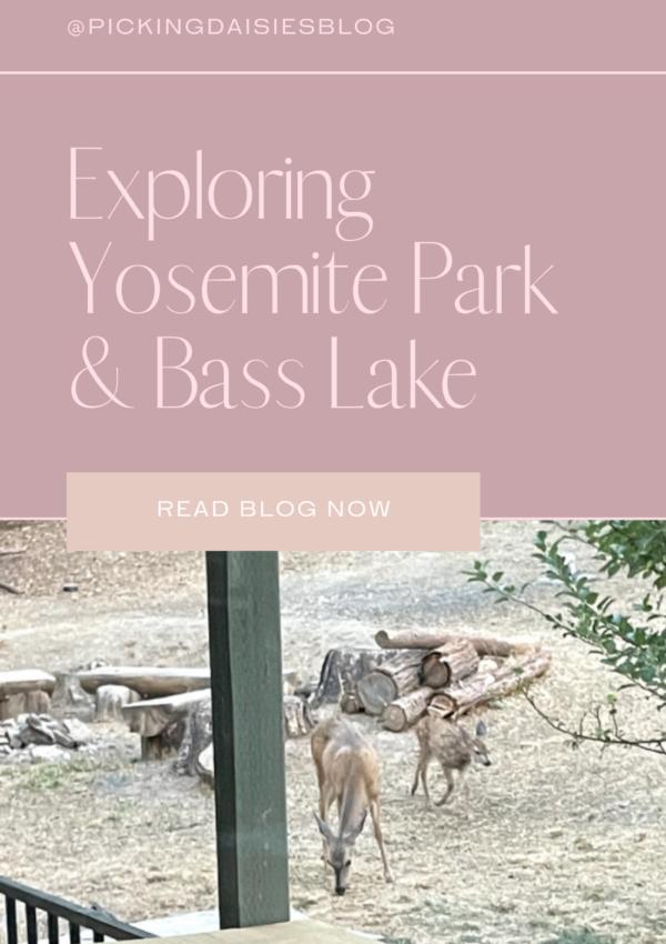 Exploring Yosemite Park & Bass Lake