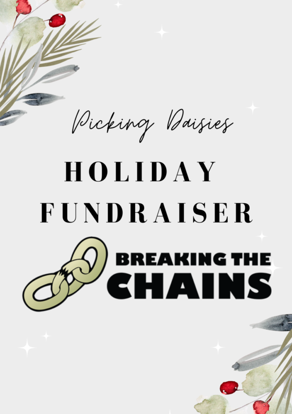Breaking The Chains Fresno Holiday Donation Picking Daisies Blog California Human Trafficking
