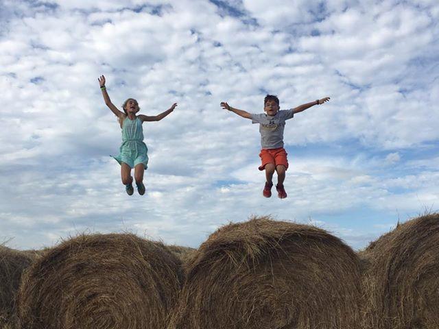 Hay Jump