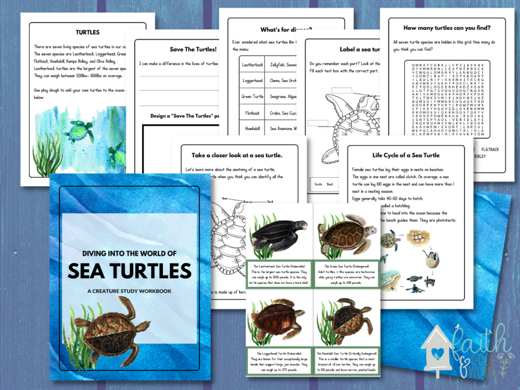 Printables that are inside the creature study workbook.