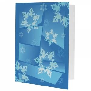 NE Snowflakes PM 30394x63025designclosed_1.jpg
