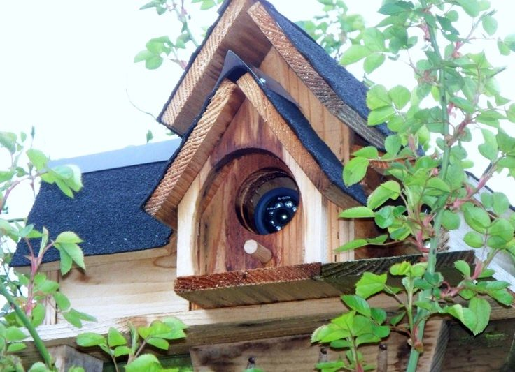 Clever Ways To Disguise Your Home Security Camera