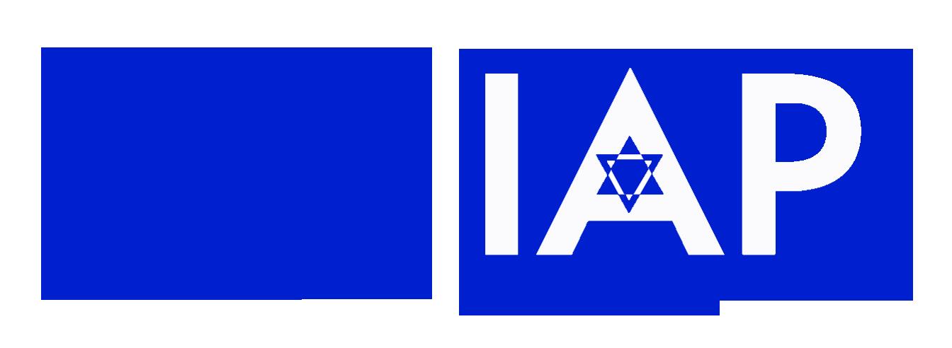 Israeli Artists Project