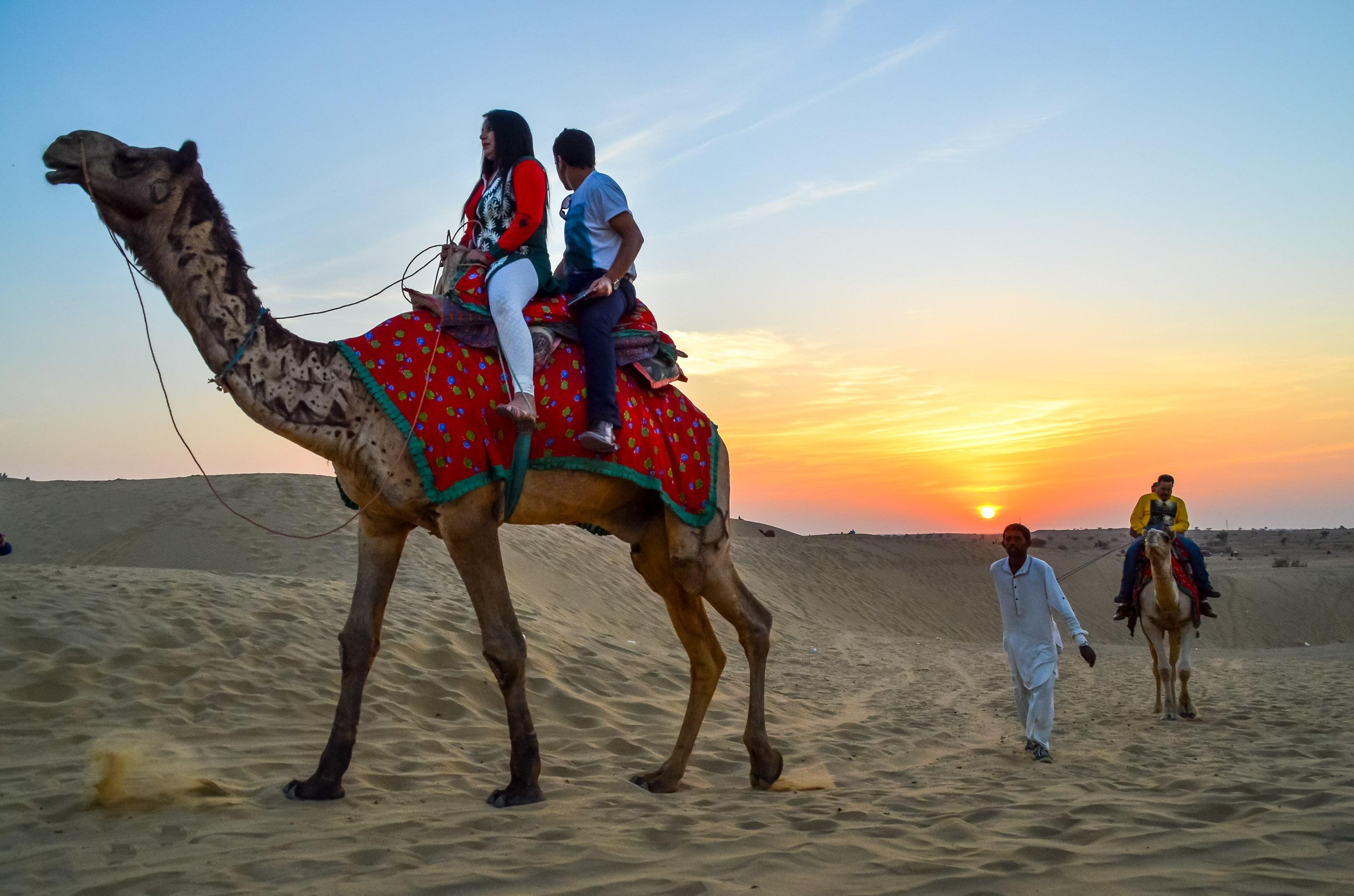 Camel Safari Desert Rajasthan