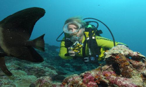 Lakshadeep Underwater