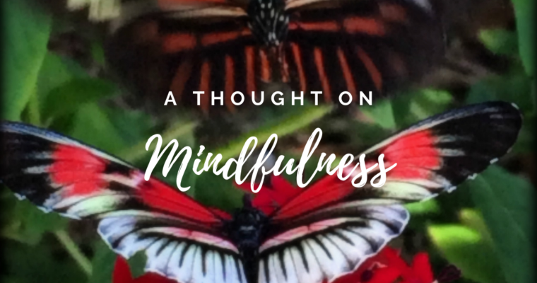 A Thought On Mindfulness