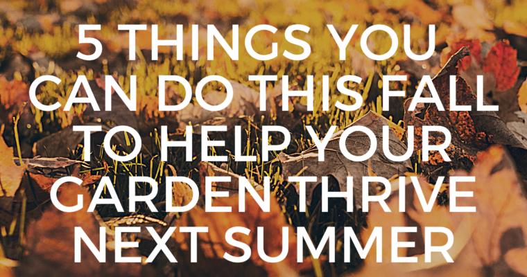 5 Garden Soil Tips