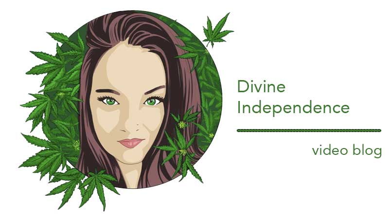 Divine Independence Ep 2