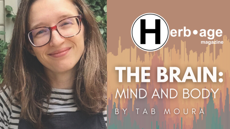 The Brain: Mind and Body