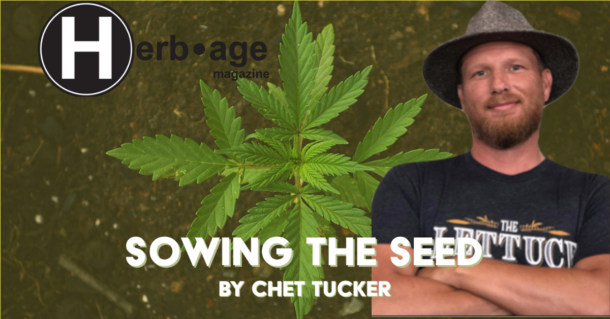 Sowing the Seed pt.11