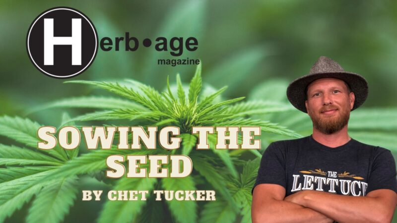 Sowing the Seed pt.12