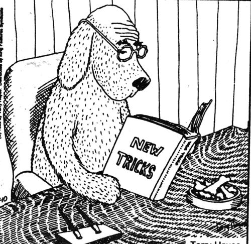 Can you REALLY teach an old dog new tricks