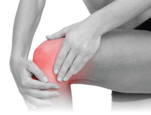 tampa knee pain doctor, chiropractor knee pain tampa, wesley chapel chiropractors, chiropractors in tampa, tampa chiropractic, chiropractic clinics tampa