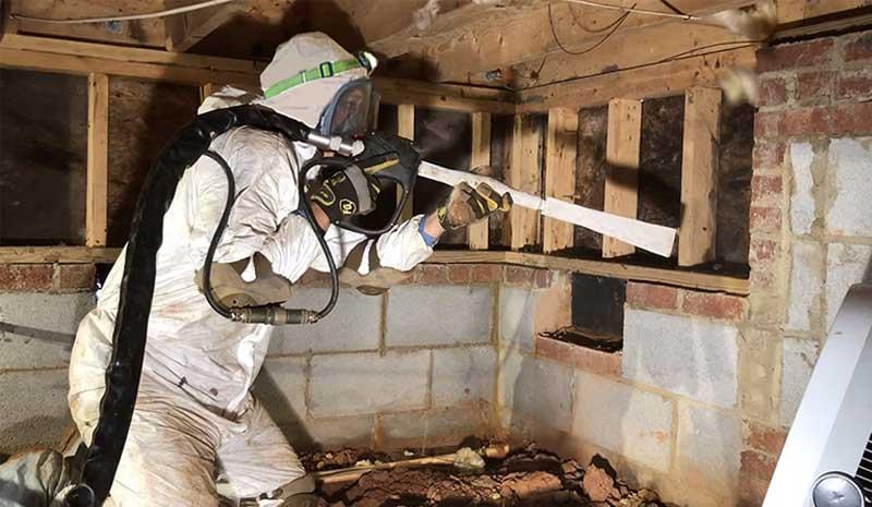 crawl space mold removal toronto