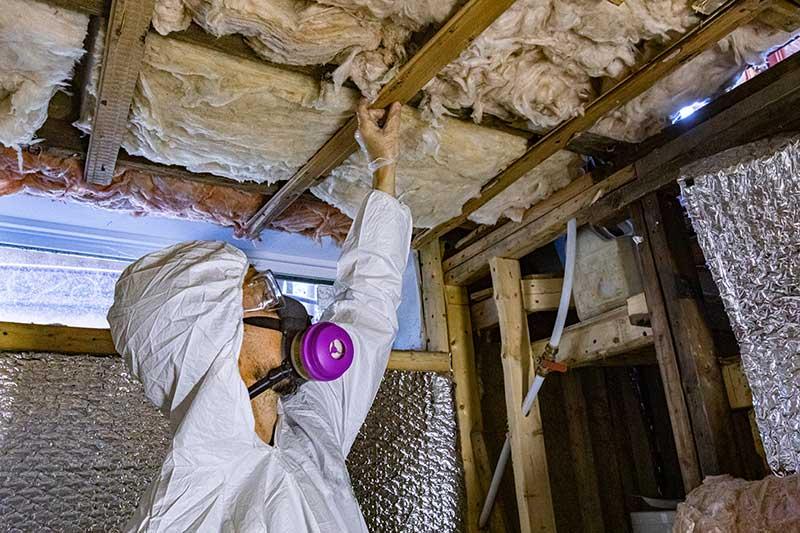 mold inspection toronto house buyer