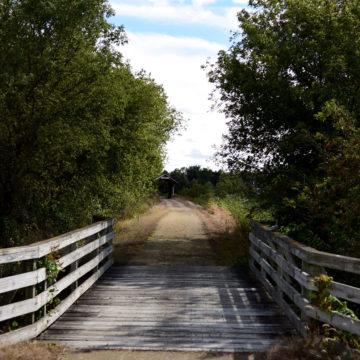 Jane_Addams_Richland_Creek_Trail
