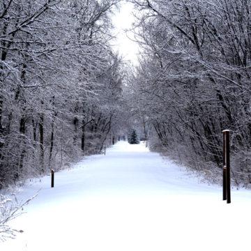 021219_jane-addams-trail-winter-2