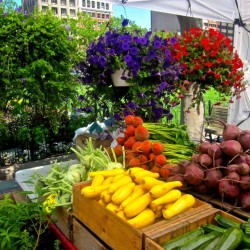 Summer's Bounty: Bet You'll See Something New