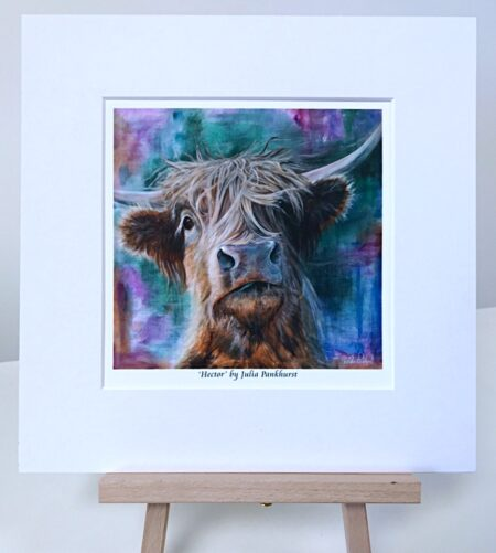Hector Highland Cow Pankhurst Gallery