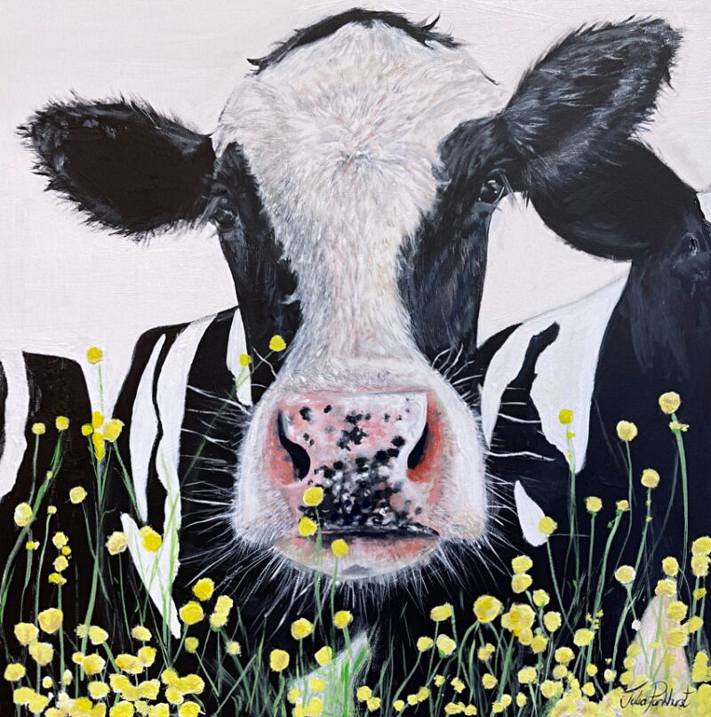 Buttercup Friesian Cow Painting Art Pankhurst Gallery