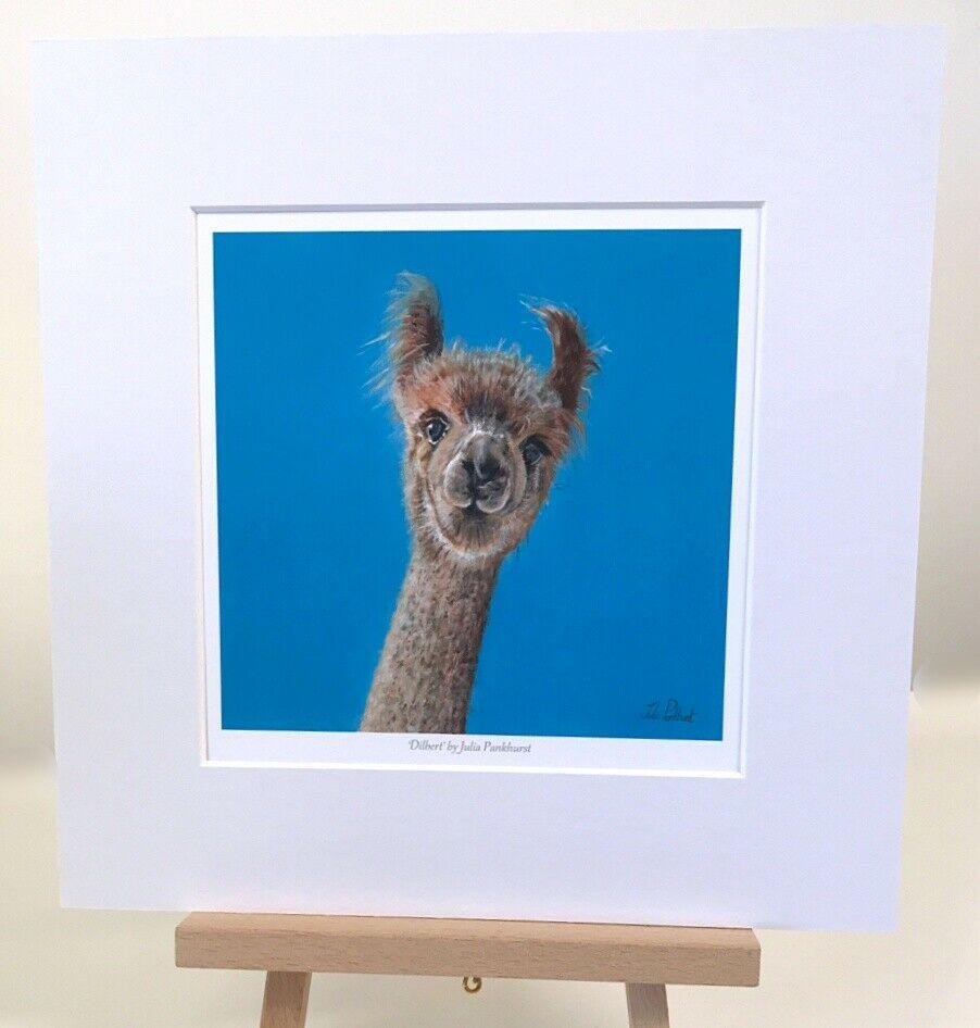 Dilbert Alpaca art gift print Pankhurst Gallery