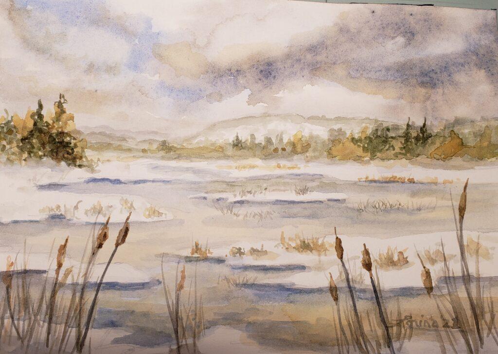 Otterslide Marsh