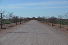 South-Slope-Dairy-in-Curry-County-New-Mexico-2