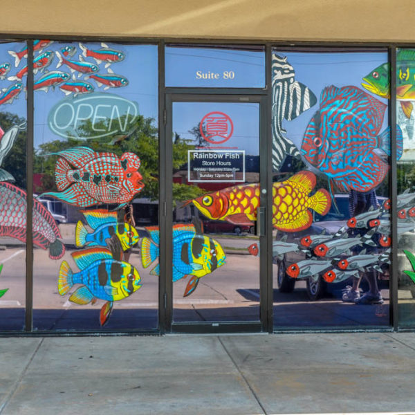 Rainbow Fish - 4618 E. Central, Suite 80 - photo from 2009
