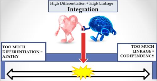 sweet spot low integration to high integration IPNB SPECTRUM