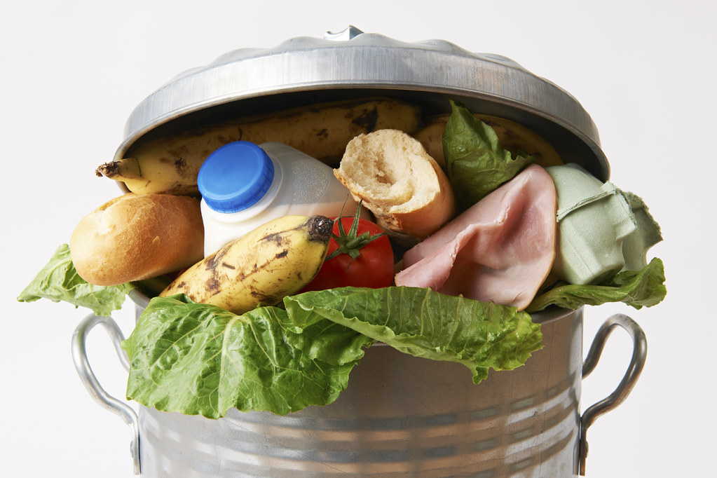 stop wasting food by throwing it away by growing your own food